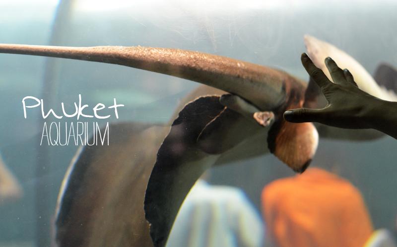Cover_Aquarium